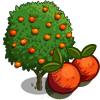 Blood Orange Tree-icon.png