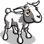 Pinkish White Lamb-icon