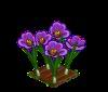 Perfect Saffron-icon
