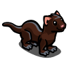 American Mink-icon.png