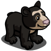 Andean Bear Cub-icon.png