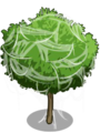Almond Tree3-icon.png