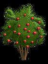 Pomegranate2-icon