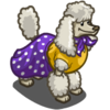 Skirty Dog-icon