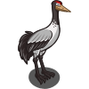 Black Neck Crane-icon
