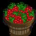 Red Currant Bushel-icon