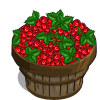 Red Currant Bushel-icon