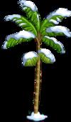 Acai Tree7-icon