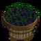Blackberry Bushel-icon