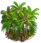 Palm Trees (decoration)-icon