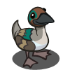 Green Winged Teal-icon