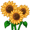 Sunflower-icon