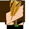 Amber Grain Mastery Sign-icon