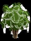 Pomegranate3-icon