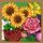Pretty Garden-icon