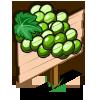 White Grape Mastery Sign-icon