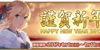 2017 New Year Campaign