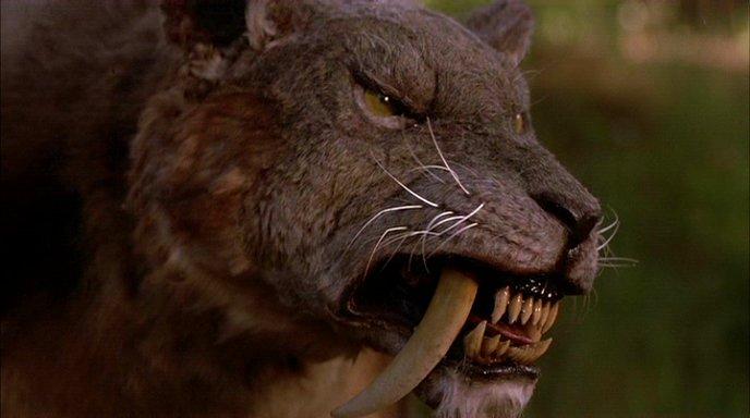 Saber-tooth Tiger(Smilodon fatalis) | Fear world Wiki ...