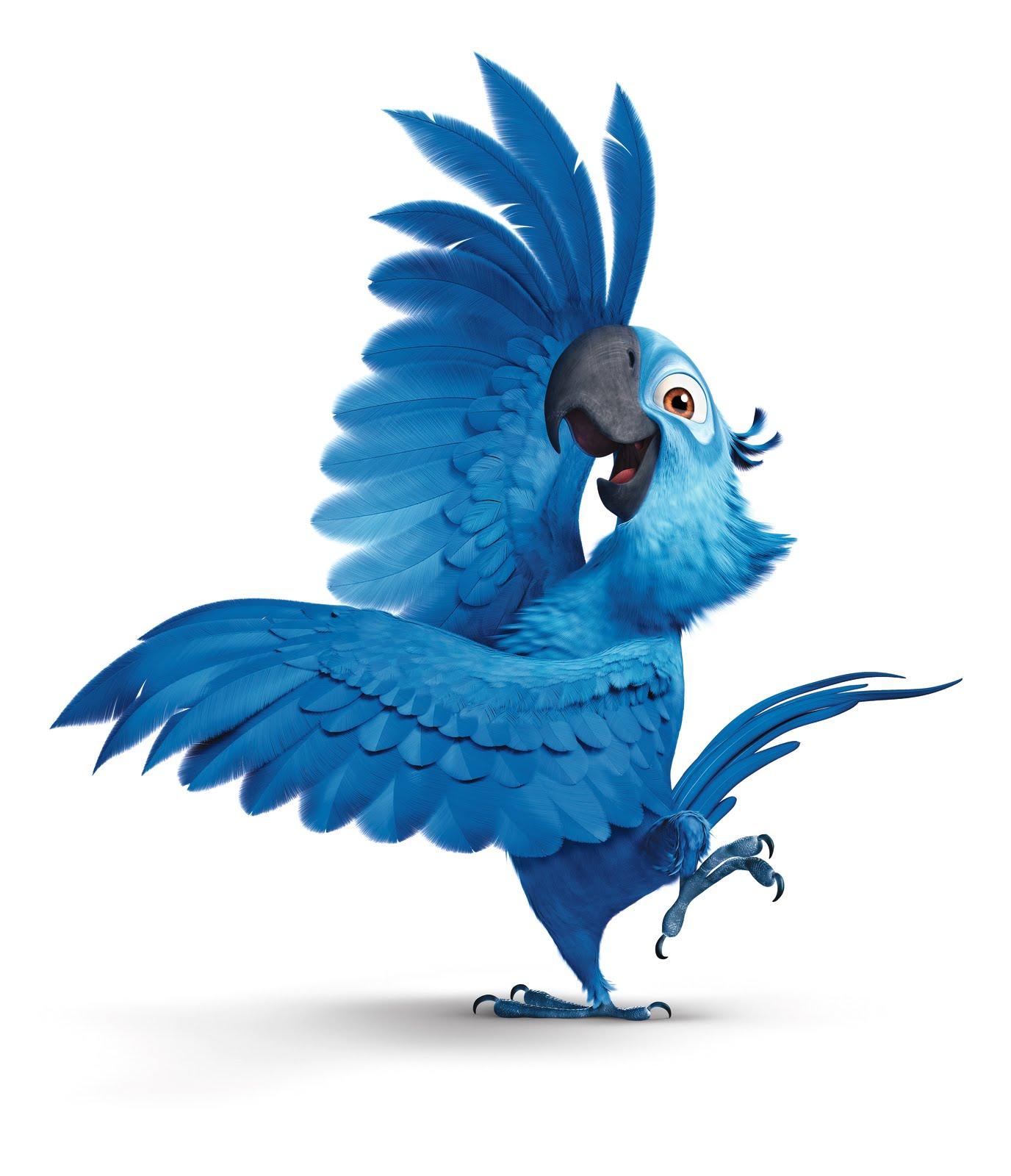 Image blu jewel rio wiki fandom powered