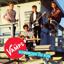 SomebodyToYou