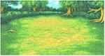 FFI Background Forest1