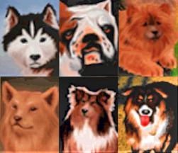 File:PetPals.PNG