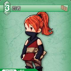 1-065C Ninja (<a href=