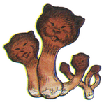 Ottershroom FFIII Art