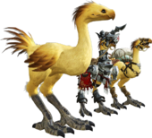 Chocobos en Final Fantasy XIV.