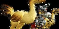 Chocobo (Final Fantasy XIV)