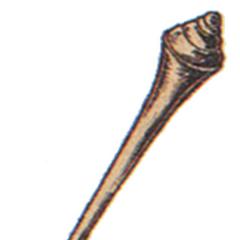 Golem Staff.