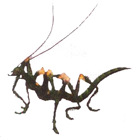 File:Insect Matriarch ffx-2.jpg