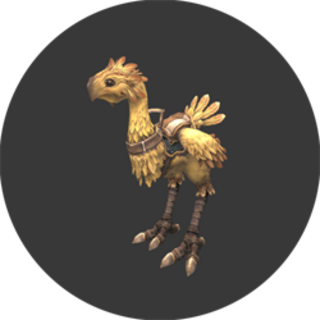 Chocobo Rental<br />(K-8)