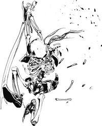 Amano skeleton