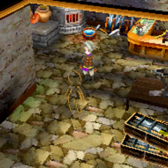 The townspeople under the curse of Djinn (DS).