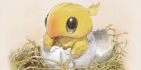 Chocobo raising (Final Fantasy XI)