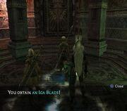 Iga-Blade-received
