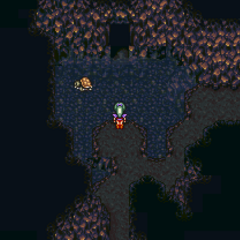 The cave's healing spring (SNES).