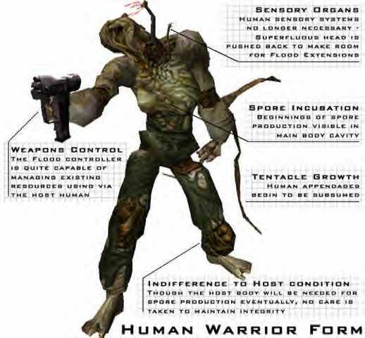 File:Warrior Form Human2.png