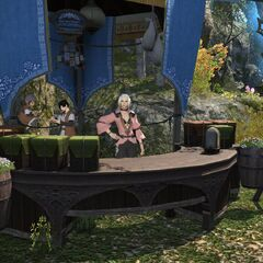 A shop in New Gridania.