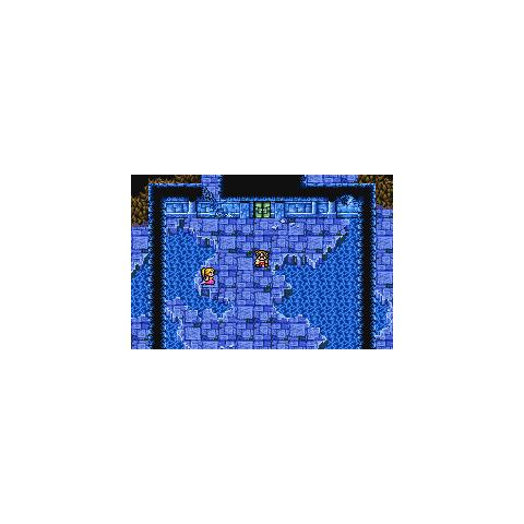 Lifespring Grotto (GBA).