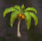 LRFFXIII Tropical Tree