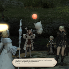 Raya-O-Senna talks to a moogle.