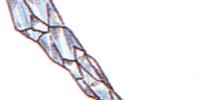 Ice Rod