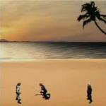 VIIBC Costa del Sol Beach