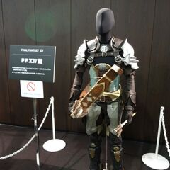 Full to-scale replica of the CG Midlander's armor.