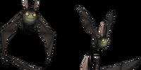 Bat Trio
