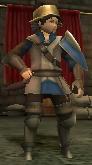 FE13 Mercenary (Donnel)