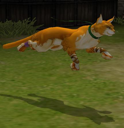 File:FE9 Cat Transformed (Lethe).png