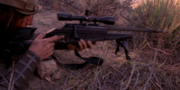 Whitefall rifle